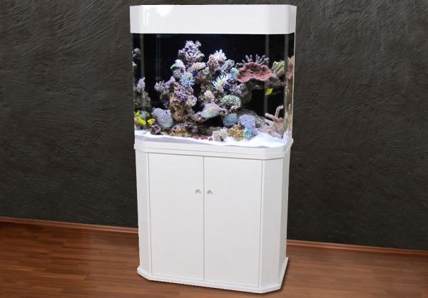 ET- 96 Panorama-Aquarium T5 in weiß AUSSTELLUNGSSTÜCK