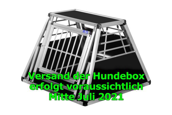 Transportbox N29 / 85x88x61,5cm mit Notausstieg
