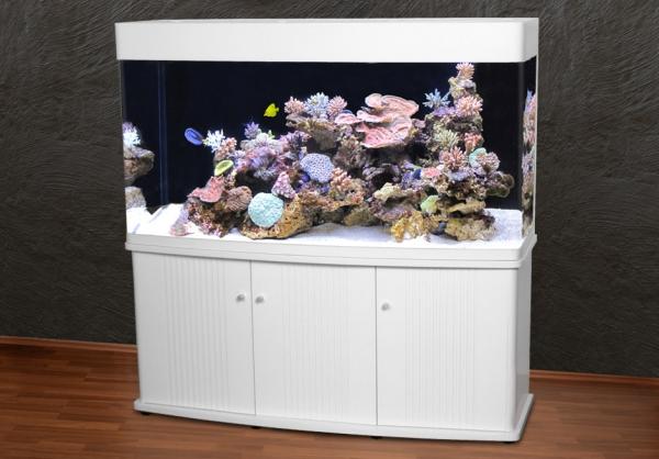 RG-150 M Panorama-Aquarium T5 weiß / zentraler Überlaufschacht + Unterschrank-Filterbecken