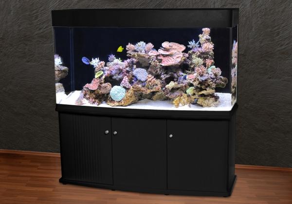 RG-150 Panorama-Aquarium T5 ohne Lochbohrung