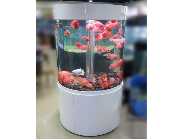 DO-100 Zylinder-Aquarium 360° T5 weiß
