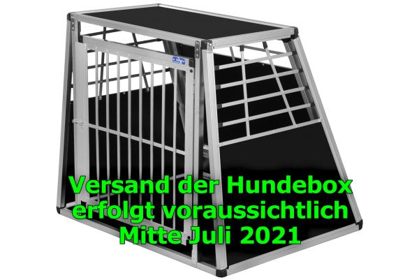 Transportbox N6 / 80x100x86cm mit Notausstieg