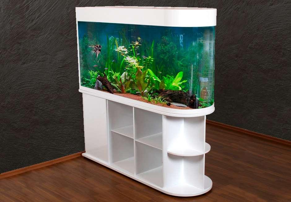 Raumteiler-Aquarium U150 | Komplettaquarien | Aquarien | Tierwelt ...