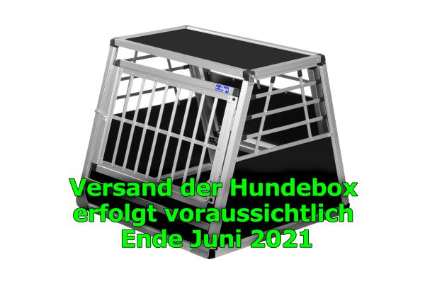 Transportbox N19 / 72x72x62cm mit Notausstieg